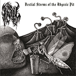 Bestial Storms (cover)